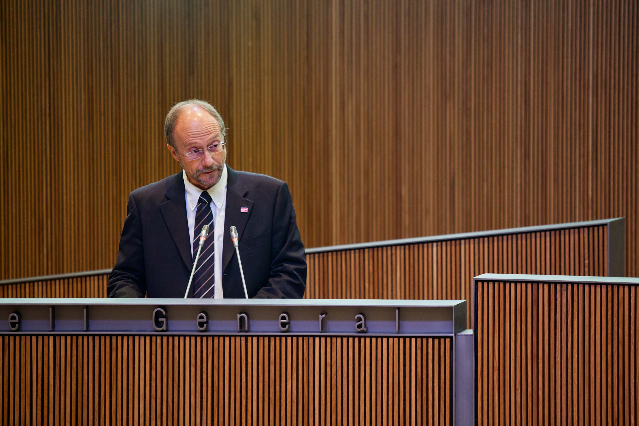 Intervenció de Víctor Naudi, president suplent del Grup Parlamentari Mixt