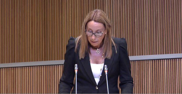 Intervenció de la Sra. Sílvia E. Bonet, consellera general del Grup Parlamentari Mixt