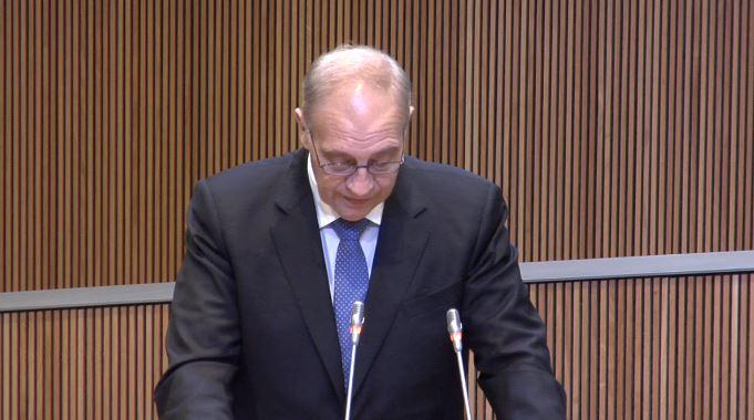 Intervenció del Sr. Josep Pintat, president del Grup Parlamentari Liberal