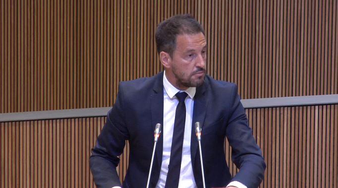 Intervenció del Sr. Pere López, president del Grup Parlamentari Mixt