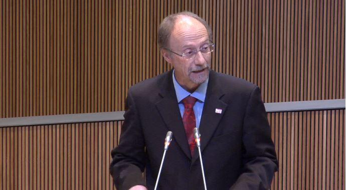 Intervenció del Sr. Víctor Naudi, conseller general del Grup Parlamentari Mixt