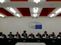 Grup d'Amistat UE