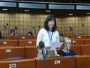 2014-06-27 APCE 3 part de la sessió. Estrasburg 1